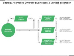 Strategy Alternative Diversify Businesses And Vertical Integration