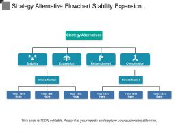 Strategy Alternative Flowchart Stability Expansion Retrenchment And Combination