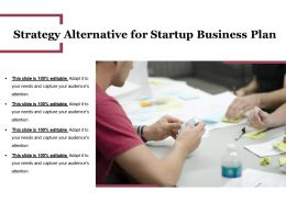 Strategy Alternative For Startup Business Plan