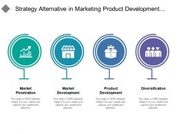 Strategy Alternative In Marketing Product Development And Diversification