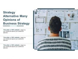 strategy_alternative_many_opinions_of_business_strategy_Slide01
