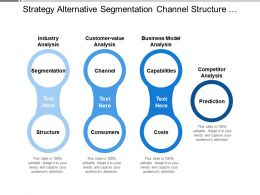Strategy Alternative Segmentation Channel Structure Consumer Capabilities Costs