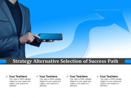 Strategy Alternative Selection Of Success Path