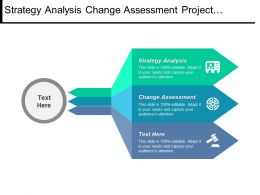 Strategy Analysis Change Assessment Project Planning Scheduling Conflict Management Cpb