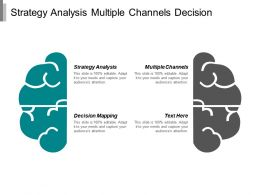 Strategy Analysis Multiple Channels Decision Mapping Business Communication Cpb