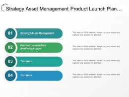 Strategy Asset Management Product Launch Plan Marketing Budget Cpb
