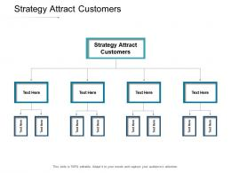 Strategy Attract Customers Ppt Powerpoint Presentation Layouts Grid Cpb