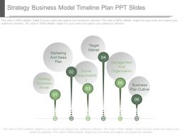 Strategy Business Model Timeline Plan Ppt Slides