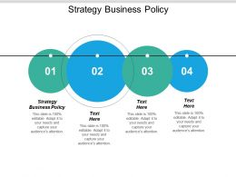 Strategy Business Policy Ppt Powerpoint Presentation Gallery Ideas Cpb