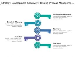 Strategy Development Creativity Planning Process Management Control System