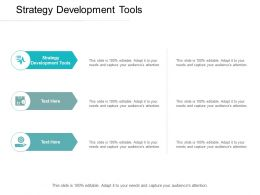 Strategy Development Tools Ppt Powerpoint Presentation Professional Cpb