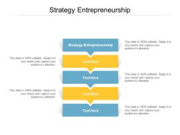 Strategy Entrepreneurship Ppt Powerpoint Presentation Infographics Objects Cpb
