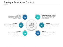 Strategy Evaluation Control Ppt Powerpoint Presentation Infographic Cpb