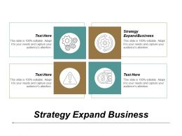 Strategy Expand Business Ppt Powerpoint Presentation Icon Diagrams Cpb