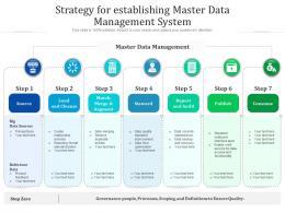 Strategy For Establishing Master Data Management System