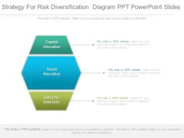 Strategy For Risk Diversification Diagram Ppt Powerpoint Slides