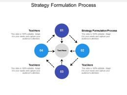 Strategy Formulation Process Ppt Powerpoint Presentation Gallery Topics Cpb