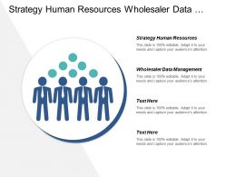 Strategy Human Resources Wholesaler Data Management Strategy Modeling Cpb