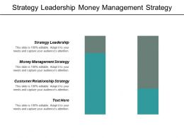 Strategy Leadership Money Management Strategy Customer Relationship Strategy Cpb