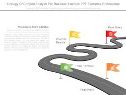Strategy Of Conjoint Analysis For Business Example Ppt Examples Professional