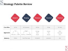 Strategy Palette Review Ppt Powerpoint Presentation Gallery Show