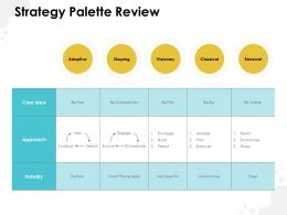 Strategy Palette Review Ppt Powerpoint Presentation Professional Outline