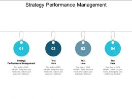 Strategy Performance Management Ppt Powerpoint Presentation Summary Tips Cpb