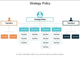 Strategy Policy Ppt Powerpoint Presentation Professional Slide Download Cpb