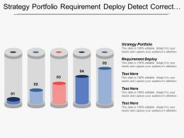 Strategy Portfolio Requirement Deploy Detect Correct Supporting Activities