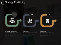 Strategy Positioning Ppt Powerpoint Presentation Portfolio Designs Download Cpb