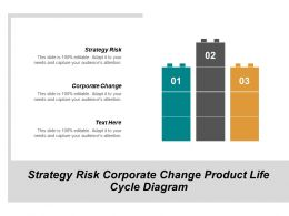 Strategy Risk Corporate Change Product Life Cycle Diagram Cpb