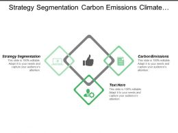 strategy_segmentation_carbon_emissions_climate_change_company_published_Slide01