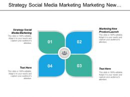 Strategy Social Media Marketing Marketing New Product Launch Cpb