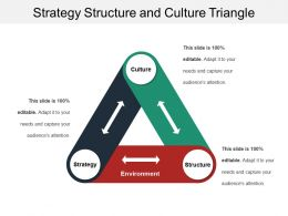 Strategy Structure And Culture Triangle