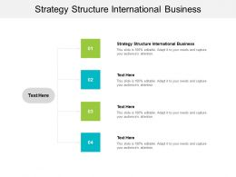 Strategy Structure International Business Ppt Powerpoint Presentation Summary Samples Cpb