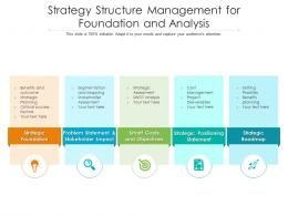Strategy Structure Management For Foundation And Analysis