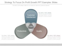 Strategy To Focus On Profit Growth Ppt Examples Slides