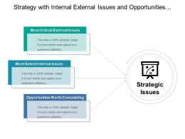 Strategy With Internal External Issues And Opportunities Worth Considering