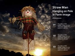 Straw Man Hanging On Pole In Farm Image