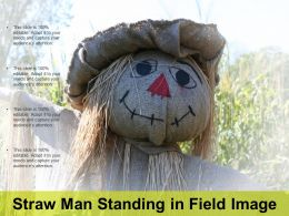 Straw Man Standing In Field Image
