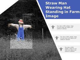 Straw Man Wearing Hat Standing In Farm Image
