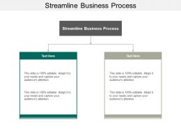 Streamline Business Process Ppt Powerpoint Presentation Styles Maker Cpb