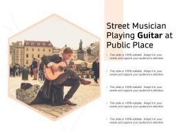 Street Musician Playing Guitar At Public Place
