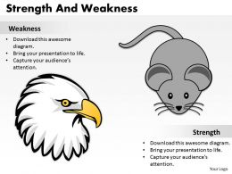 Strength And Weaknesses 34