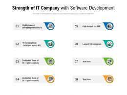 Strength Of IT Company With Software Development