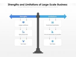 Strengths And Limitations Of Large Scale Business