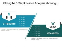Strengths And Weaknesses Analysis Showing List Of Organisational Characteristics