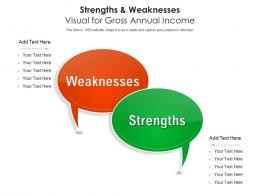 Strengths And Weaknesses Visual For Gross Annual Income Infographic Template
