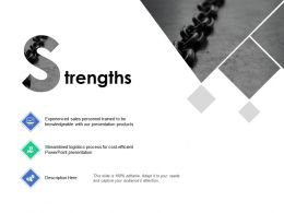 Strengths Knowledgeable B273 Ppt Powerpoint Presentation Ideas