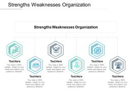 Strengths Weaknesses Organization Ppt Powerpoint Presentation Outline Display Cpb